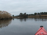 Ashville Bridge Creek, Virginia beach (Kayak Virginia Beach Images © Paul Perusse)