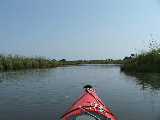 North Bay Marsh (Kayak Virginia Beach Images © Paul Perusse)