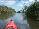 Kayaking on Horn Point Road (Kayak Virginia Beach Images © Paul Perusse)