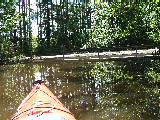 Muddy Creek road  (Kayak Virginia Beach Images © Paul Perusse)