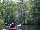 Kay and Dylan on Milldam Creek (Kayak Virginia Beach Images © Paul Perusse)