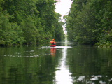 Feeder ditch to lake Drummond (Kayak Virginia Beach Images © Paul Perusse)